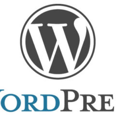 New Zero Day WordPress Vulnerability: Thousands of Websites at Risk